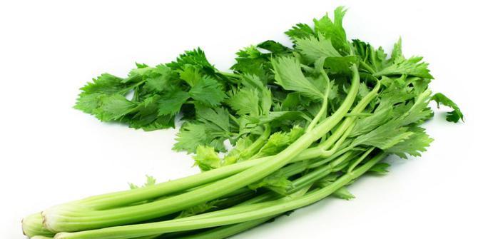 10-manfaat-mengejutkan-mengonsumsi-seledri-untuk-kesehatan