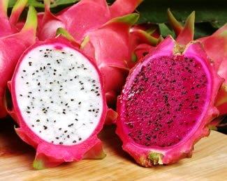 buah-naga